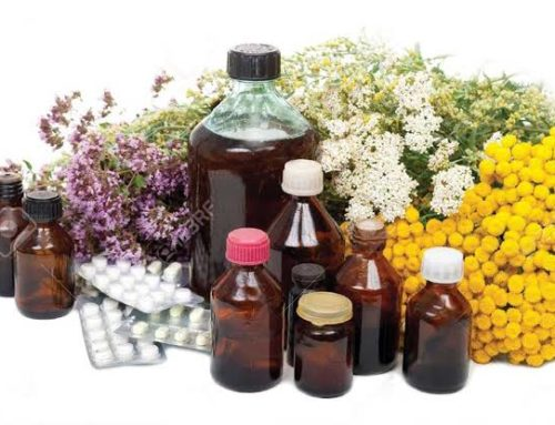 African Traditional Medicine Day –  Challenges and Opportunities