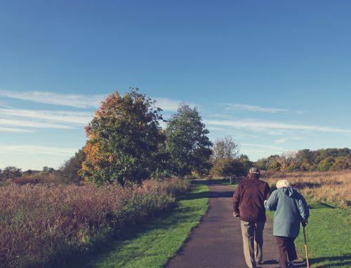 Improving Healthcare for the Elderly
